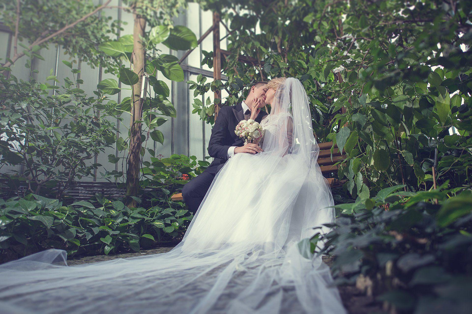 Plener ślubny palmiarnia