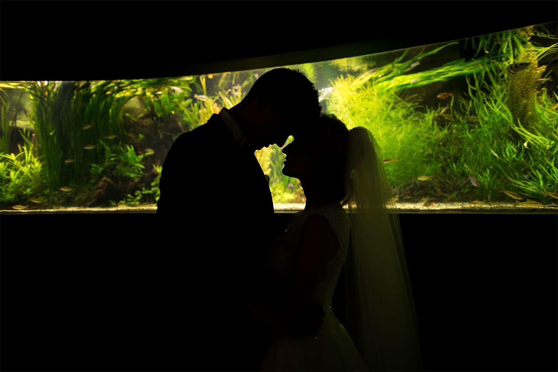 Romantyczna sesja plenerowa