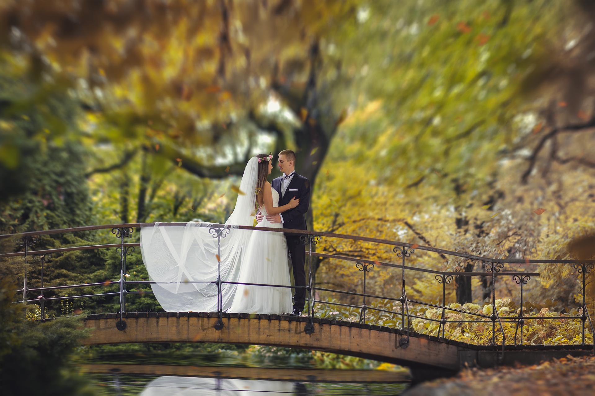 Zdjęcia ślubne most
